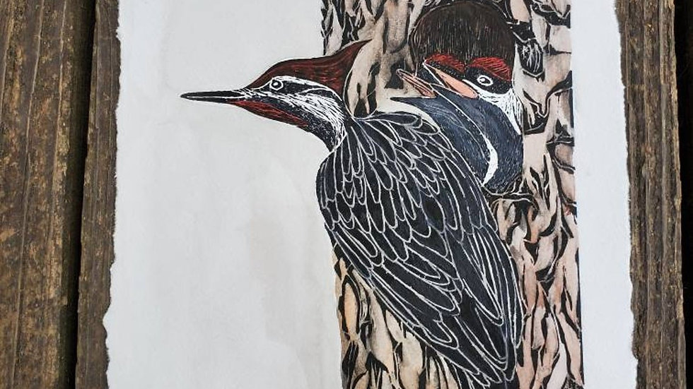 Linoleum Block Print, Woodpecker Watercolor Painting