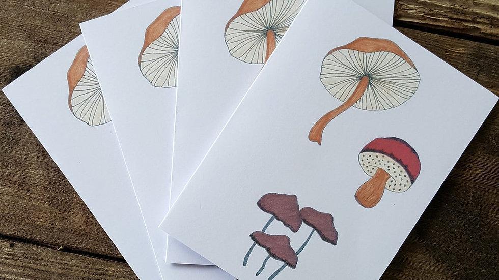 Hand Illustrated Mushroom Greeting Cards
