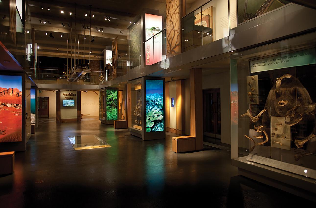 Museum of Somerset