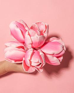 Wholesale Sugar Flowers _ NWK Creative 3