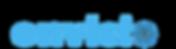 Envisoo Logo Small.png