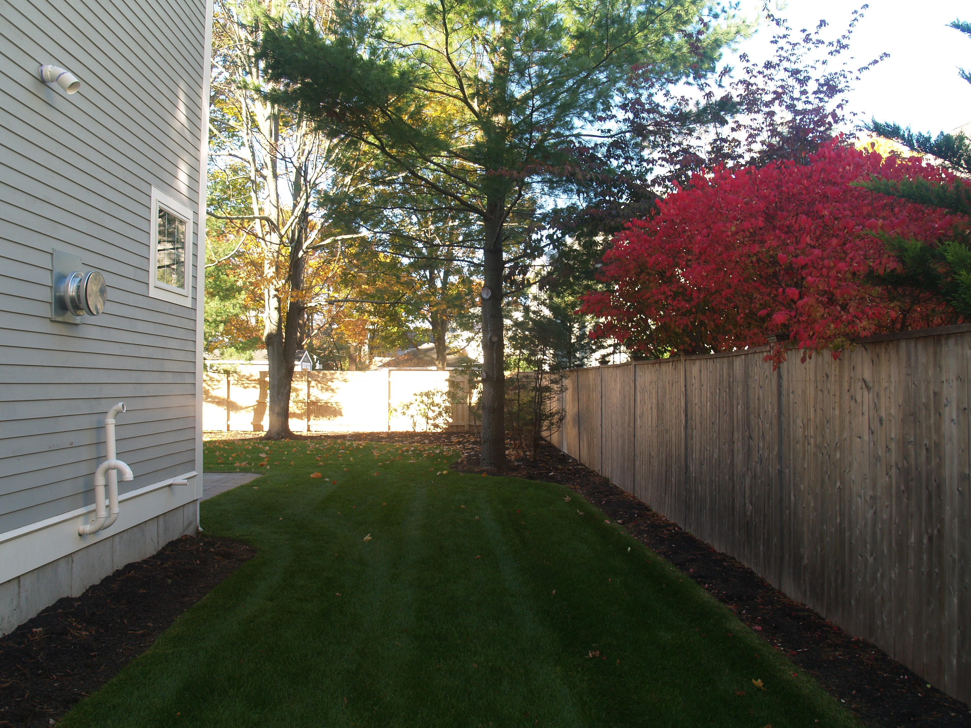 needham yard lanscape