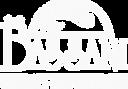 Logo Bassani Original_Slogan_Branco_PNG.