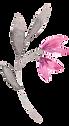 Mini_leaf_with_pink_02_adjustedLEFT.png