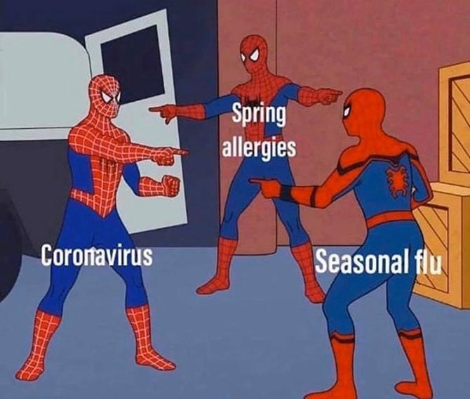 Coronavirus, seasonal flu, & spring allergies