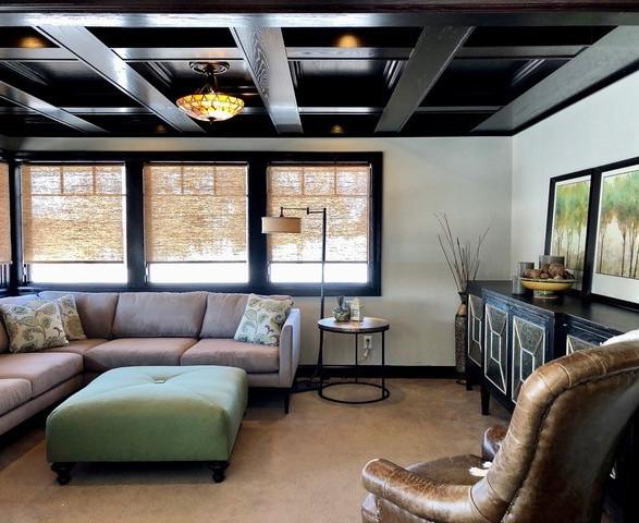 Living Room with Dark Ceiling.jpg