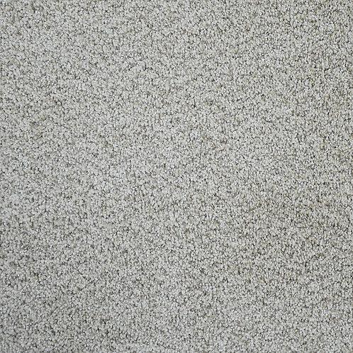 Carpet Option 4