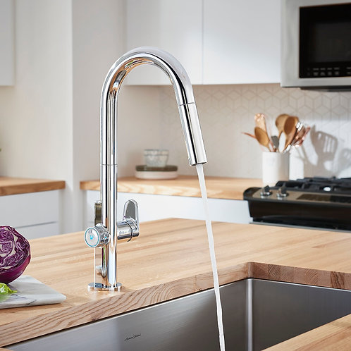 Kitchen Faucet Option 5