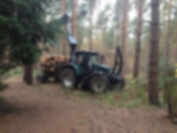 tractor forwarder.JPG