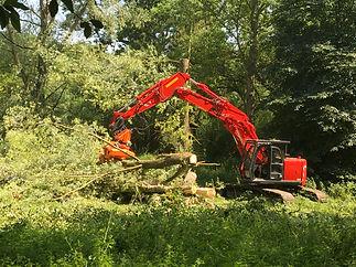 Hitachi tree shear (3).JPG