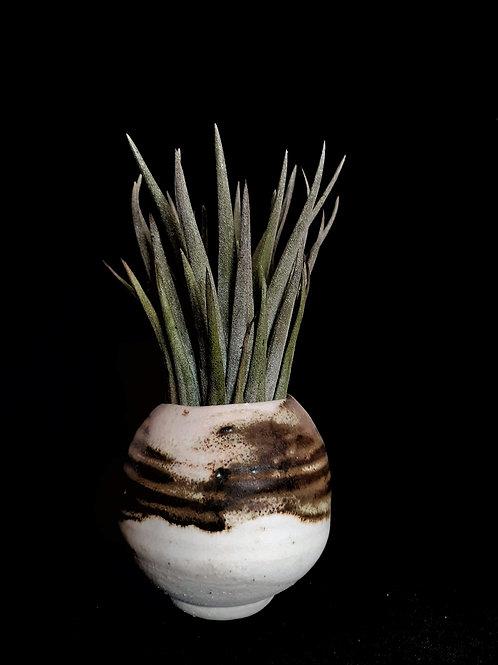 Miniature moon pot #6