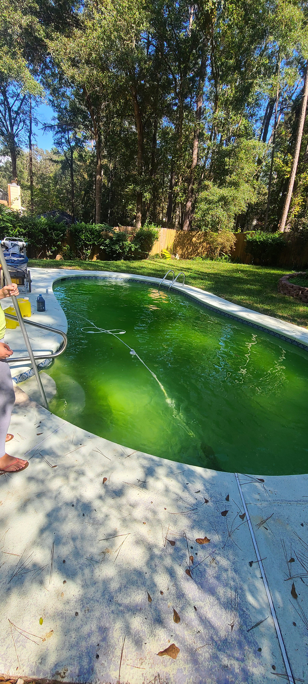 If your pool water turns green you will need to lower your pH, shock the pool water, and filtrate for 24-48 hours