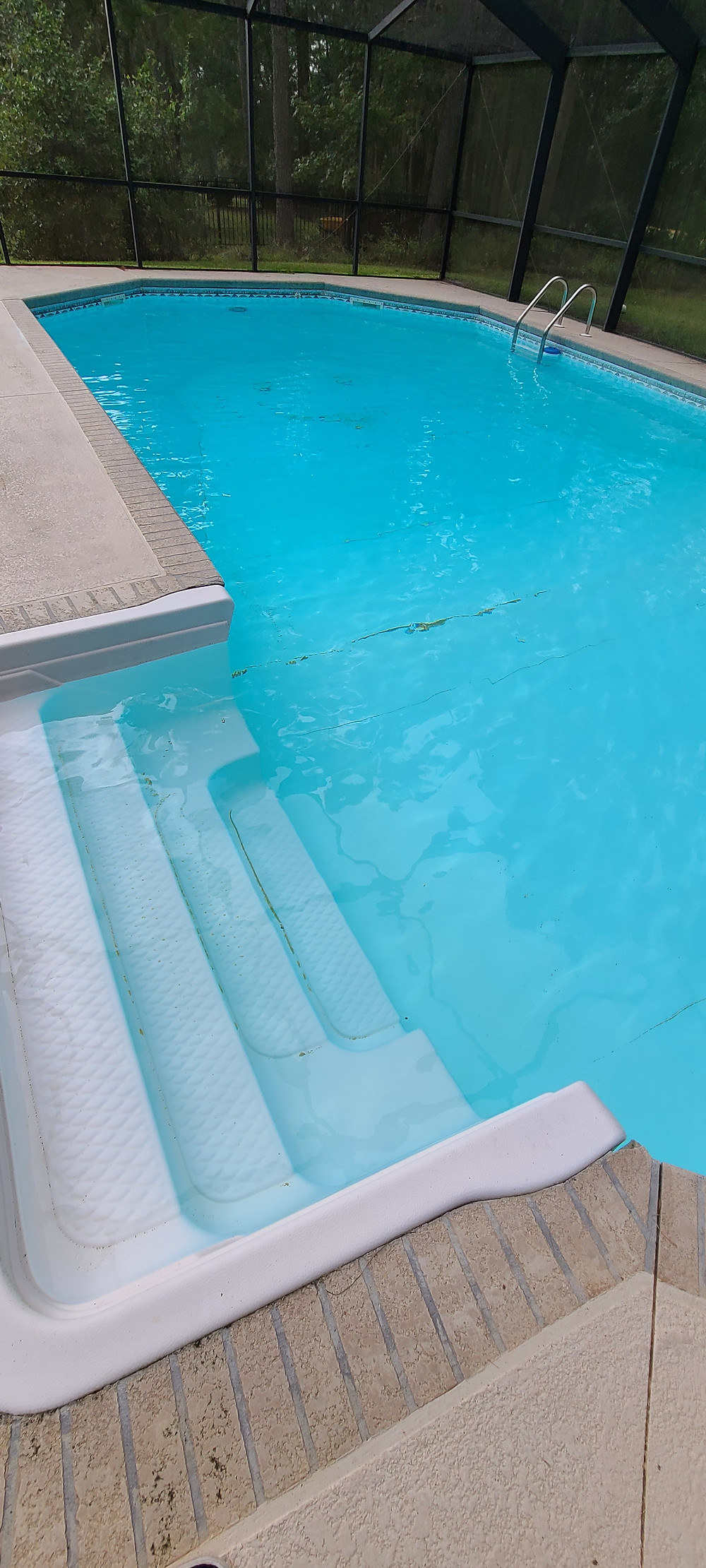 If algae keeps coming back after proper treatment, you may need to clean or refresh your pools filtration system.