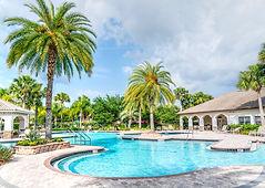 palm-trees-paradise-pool-poolside-261105
