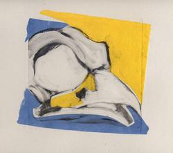 martha ebner bird skull yellow/blue