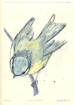 martha ebner bird monotype