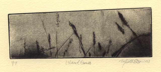 print_marthaebner_islandgrass