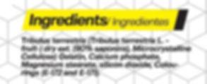 TRIBULUS HX NUTRITION 90 CAPS INFOS.JPG