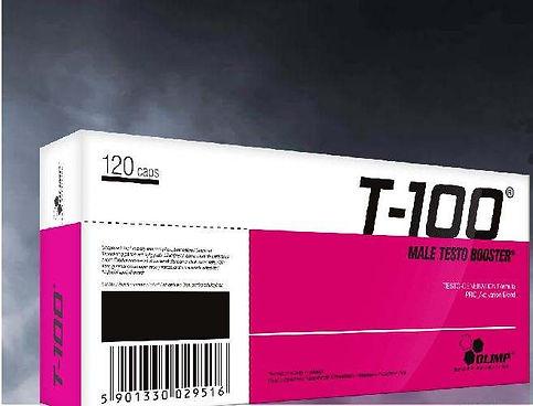 T100.JPG