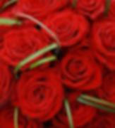 ROSE ROSSE 2.jpg