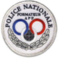 ecusson-formateur-app-police-nationale.j