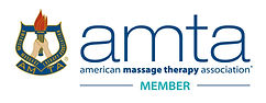AMTA Member-Compressed 9:30:2020.jpg