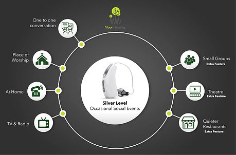 Hearing Aid Silver Levels