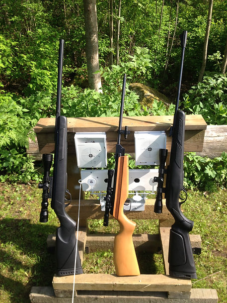 äijänkäppyrä action outdoor ilma-aseilmakivääri ammunta gamo