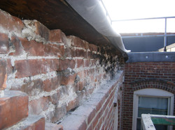 1295-9 top of wall comm ave 023