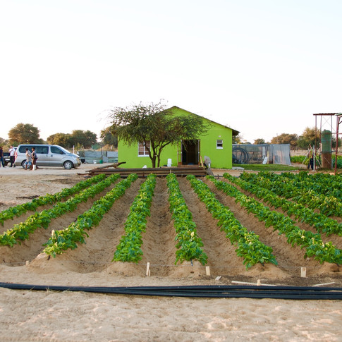 Agricultural Innovation Lab