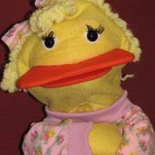 Francine the Duck