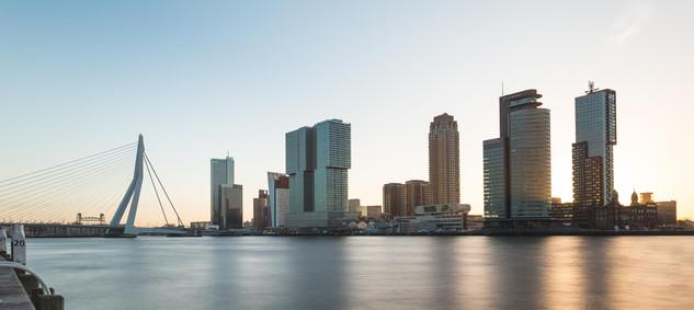 Wilhelminapier in Rotterdam