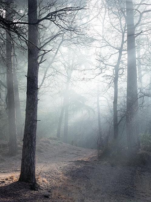 Mysterieuze wandeling