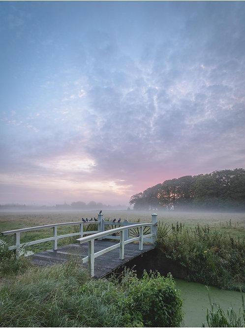 Stille ochtend bij Overveen