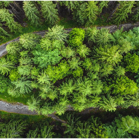 Een PRACHTIGE waterval en een GEWELDIG uitzicht - Landschapsfotografie in ROEMENIË