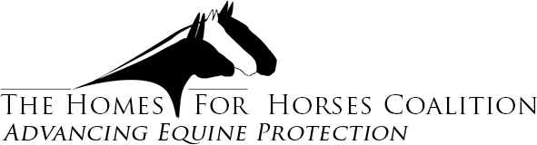 HorseCoalitionLogo_final_CS23.png