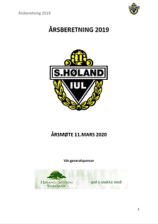 Årsberetning_2019.png