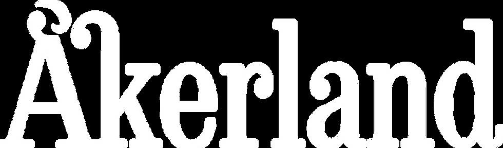 Hvit logo dypetset