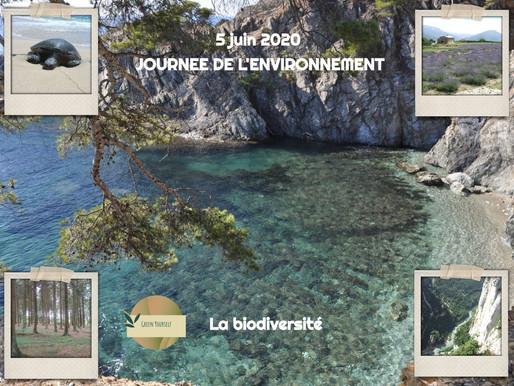 5 juin 2020 Journée mondiale de l'environnement