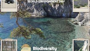 June 5, 2020 World Environment Day
