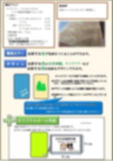難燃毛布DM裏-コピー.pdf_page_1.jpg