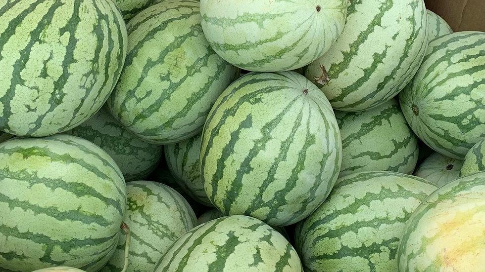 Orange Watermelon