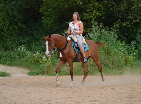 Halsring reiten ❤️