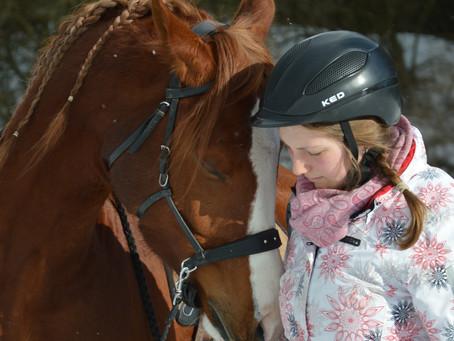 Müssen unsere Pferde geritten werden?
