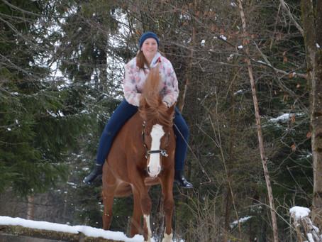 Was ist bei der Ausbildung unserer Pferde wirklich wichtig ?