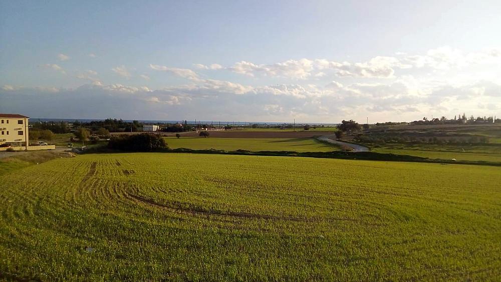 терсифану деревня, фото, общий вид