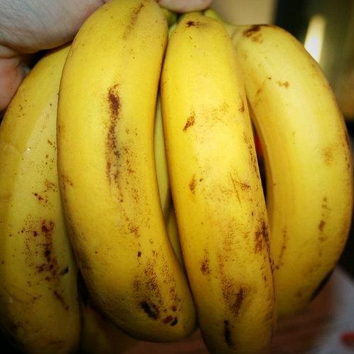 Бананы кипрские