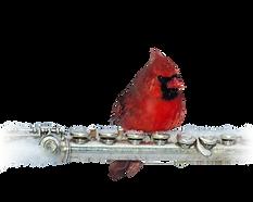 1-pajaro-cardenal-de-PAUL-KOBER.png