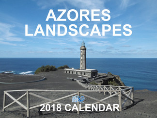New 2018 calendars in the store.
