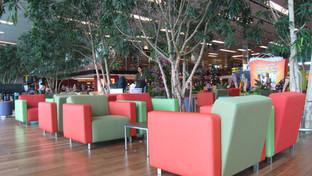 Changi Airport Terminal 1